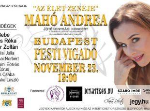 Az élet zenéje – jótékonysági koncert , 2017. november 23., Budapest